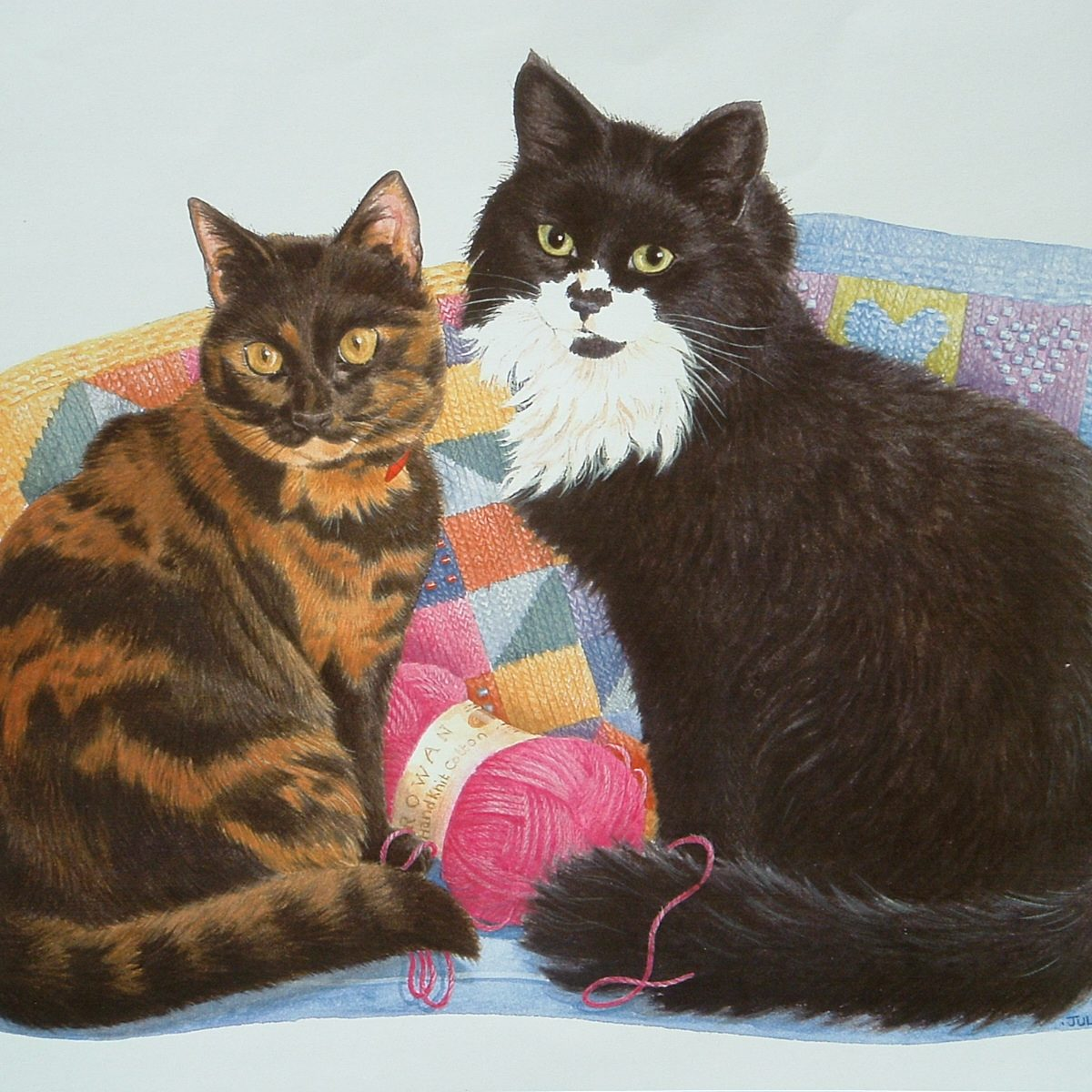 2 Jacob and Marcia Tortoiseshell cat and Black and White